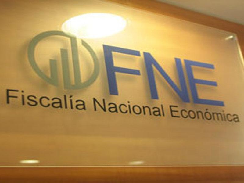 Asesor Previsional Fortalezas y Debilidades del pre informe de la FNE sobre su rol
